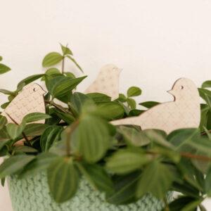 Uccellini legno per piante in vaso | Etichette e decorazioni per piante | | BiCA-Good Morning Design