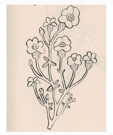 Monika Forsberg | wild Flower | BiCA